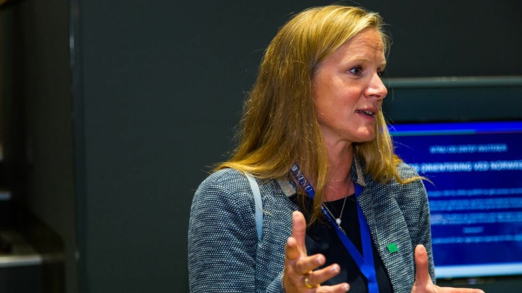 Tidligere NMBU-rektor og UHR-leder Mari Sundli Tveit tar over roret i Norges forskningsråd.