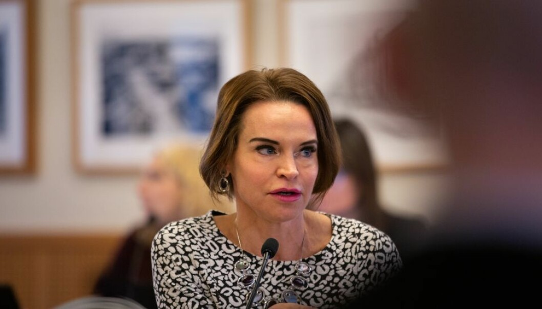 Maria Strømme bor og jobber i Sverige og ville ta et fugleperspektiv da NTNU-styret diskuterte medvirkning.