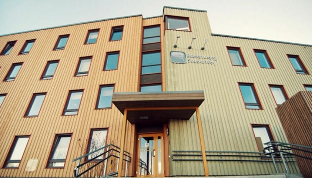 Rosenborg studentby ble etablert i 2013 etter at Trondheim Vandrerhjem rev sine gamle lokaler og bygget opp nye.