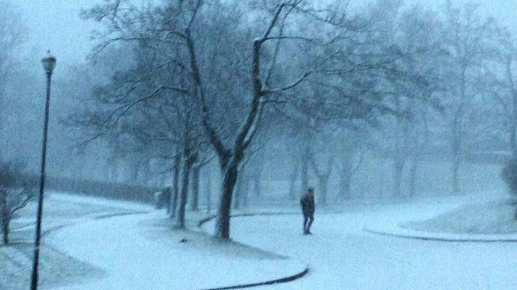 44 prosent av de spurte har oftere følt seg ensomme etter koronautbruddet i mars.