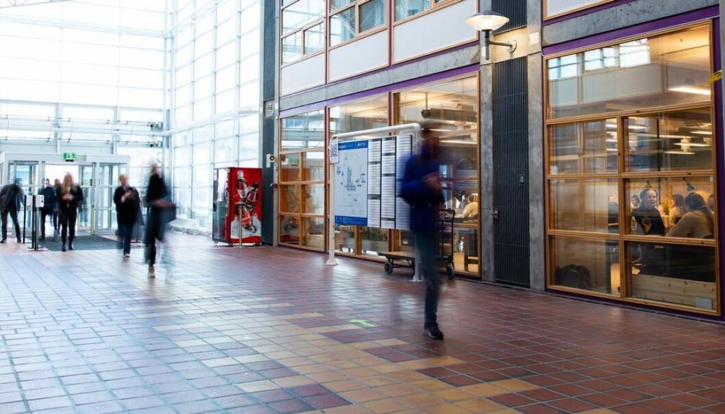 I læringsrommet Fagland på Dragvoll arbeider studentene mens folk utenfor haster forbi.