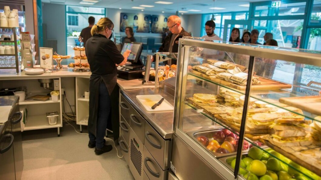 Dersom en tar turen til en av SiTs kantiner på campus, vil en kunne observere at de fleste tallerkenene har en svært skjev fordeling av kjøtt og kjøttprodukter i forhold til poteter og grønnsaker.
