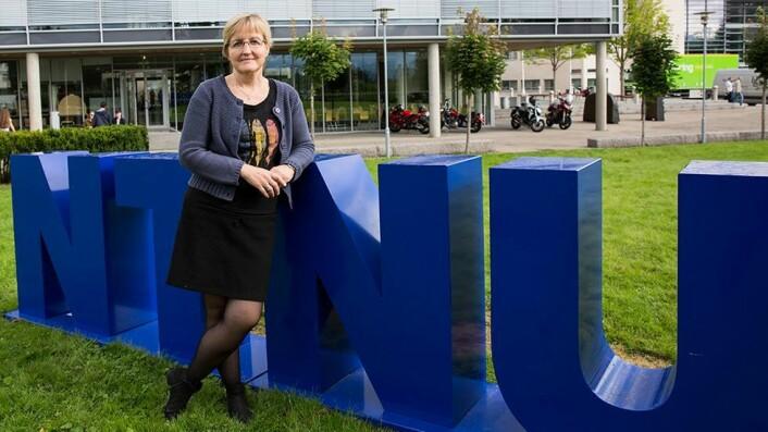 Rigmor Einan Alnes er førsteamanuensis og studieprogramleder for bachelor i sykepleie.
