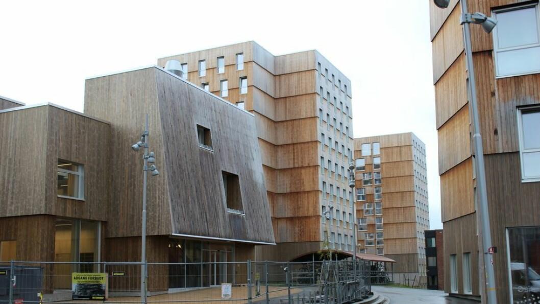Regjeringen innstiller på lavere takt i bygging av nye studengboliger neste år. (Moholt studentby)