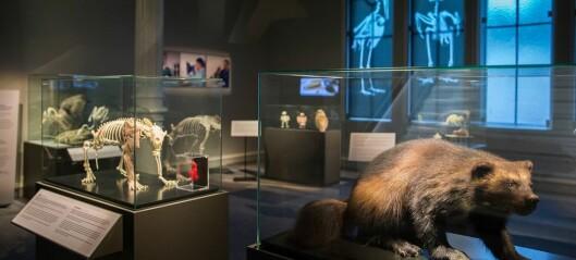 Museer sliter med inntektene