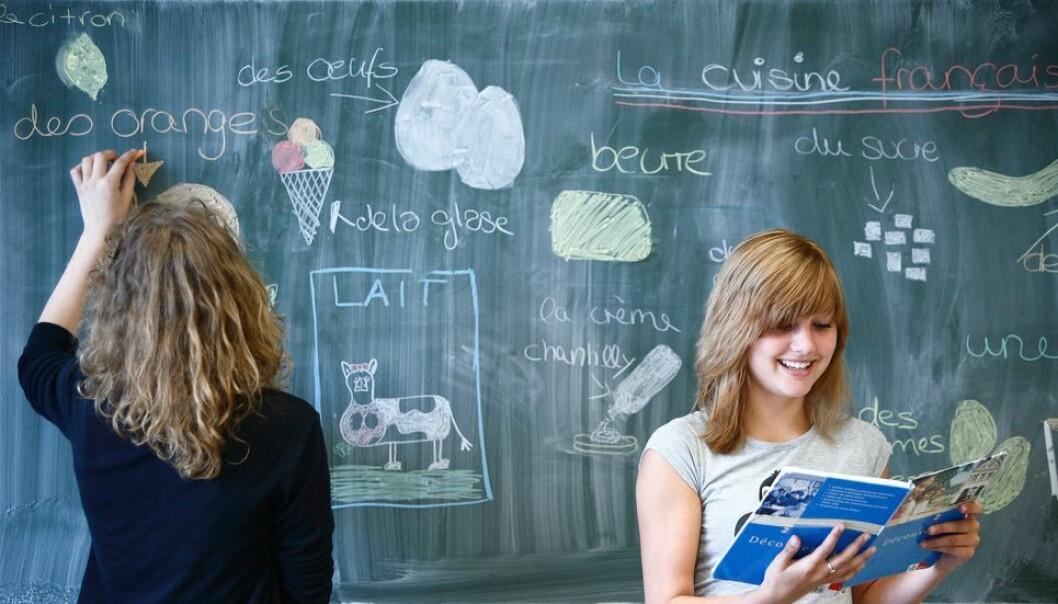 Innleggsforfatterne mener mindre fokus på fremmedspråk i videregående opplæring kan bli ødeleggende for Norge.