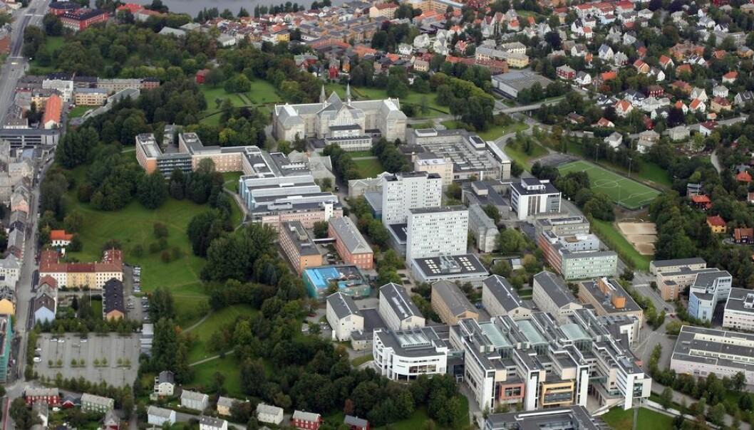 Mye skal inn på Gløshaugen når Dragvoll-miljøene blir flytter inn i NTNUs samlede campus. Sit mener fortetting og bygging i høyden i tillegg kan gi plass til en stor mengde studentboliger.