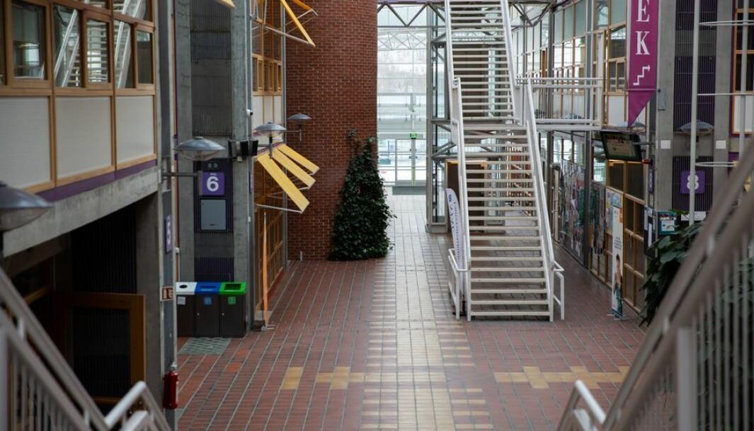 En helt vanlig ukedag i midten av mars. Normalt ville Gata på Dragvoll florert av studenter på vei mellom lesesaler, auditorier og kantine. Men med ett var det den totale stillhet.
