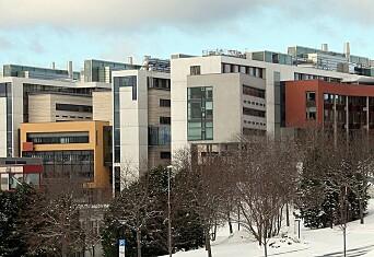 Syv instituttledere ansatt ved Fakultet for naturvitenskap