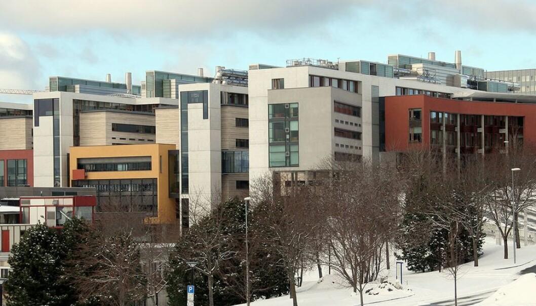 Fakultet for naturvitenskap har gitt seks sittende instituttledere fornyet tillit.