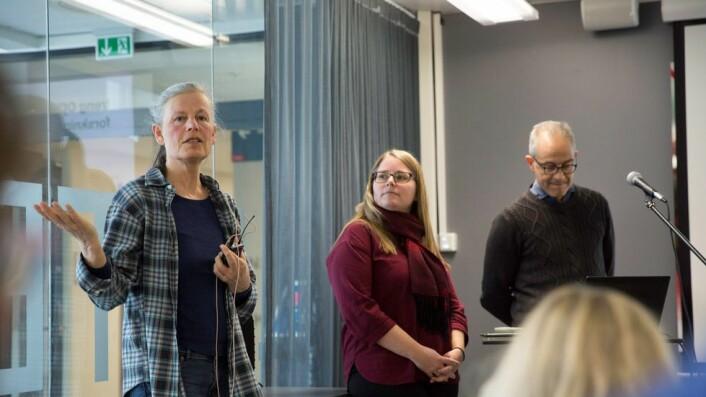 Astrid Lægreid, Ingrid Heggland, Pål Romundstad