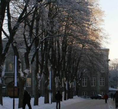 Smittet student innom steder på Gløshaugen
