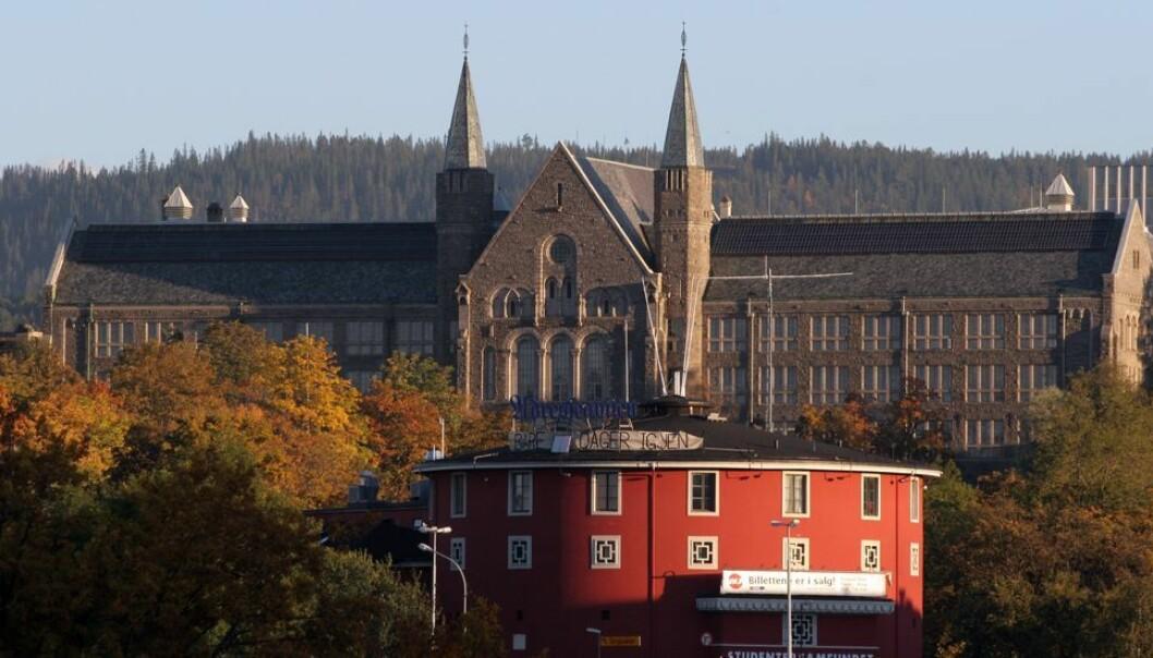 14 prosent av alle norske studenter begynte å studere ved NTNU i fjor.