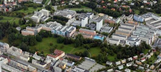 Slik vil NTNU endre Grensen og Høgskoleparken