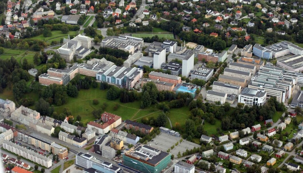 Fra det nye bygget som kommer på parkeringsplassen nederst i midten, ønsker NTNU seg en gangbru opp bakken til et nybygg på skrenten av Gløshaugen-platået.