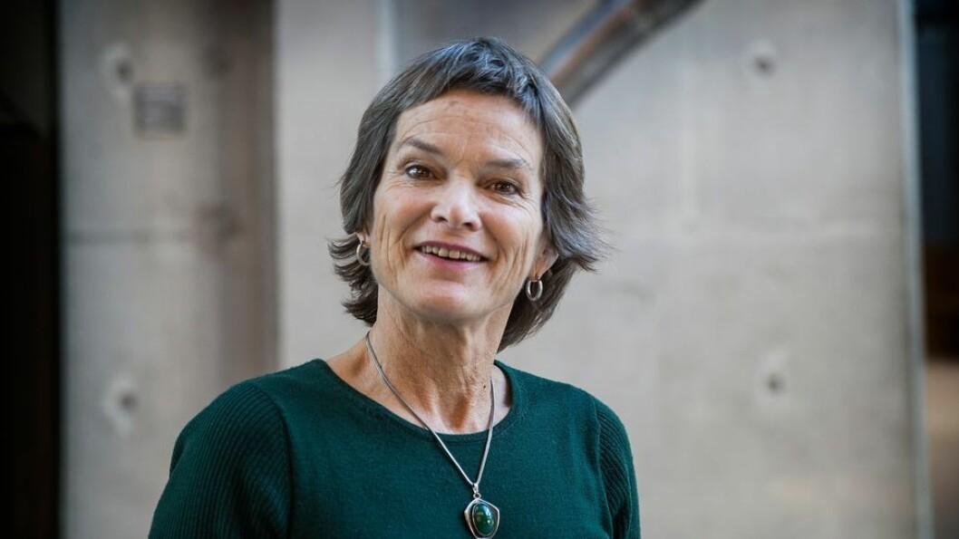 Utestengt. NTNU-professor Liv Thommesen var på vei fra Jordan til Jerusalem da hun en høstdag for to år siden ble tatt til side av israelske grensevakter. Ved utreisen fikk hun stemplet 10 års innreiseforbud i passet.