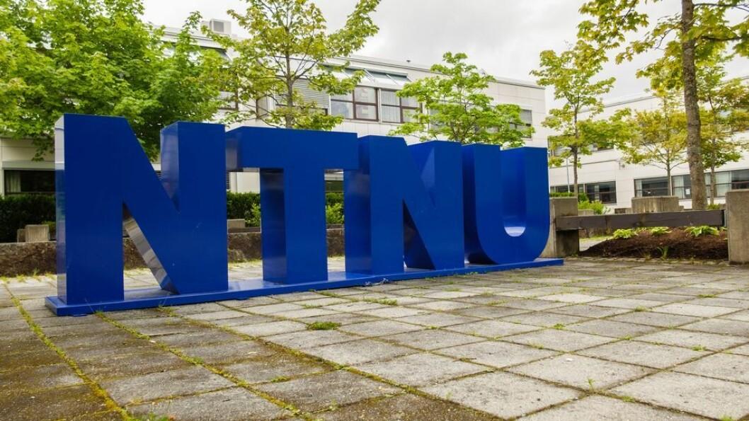 NTNU-ledelsen frykter at ansatte ved IHS, som holder til på campus Dragvoll, har vært utsatt for trakassering og at de utsettes for «uforsvarlig arbeidsmiljø.»