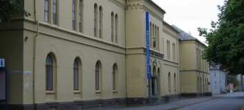 Nytt museumsstyre valgt på andre forsøk