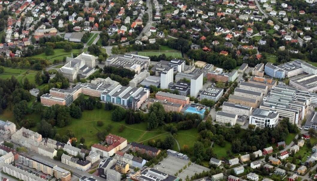 På toppen av skråningen, overfor Hesthagen, er det viktig at bygningsmassen ikke blir for tung. Nå jobber Statsbygg med beregningene.