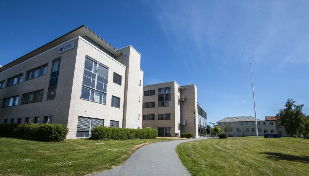 Det er satt av 68 studieplasser til det nye bachelorprogrammet i Ålesund.