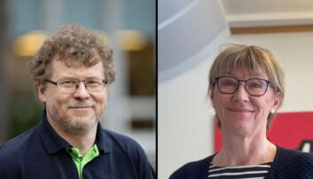 Krogstie og Aune får ikke lov til å være kandidater til NTNU-styret