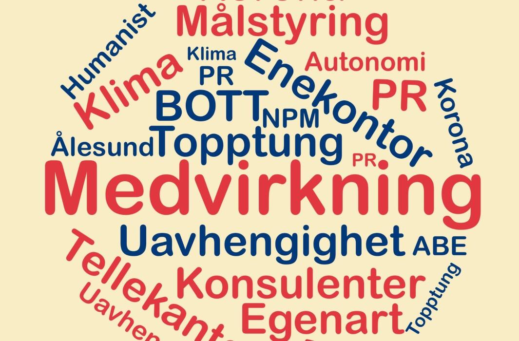 Medvirkning og topptung er ord som går igjen i kandidatenes presentasjoner.