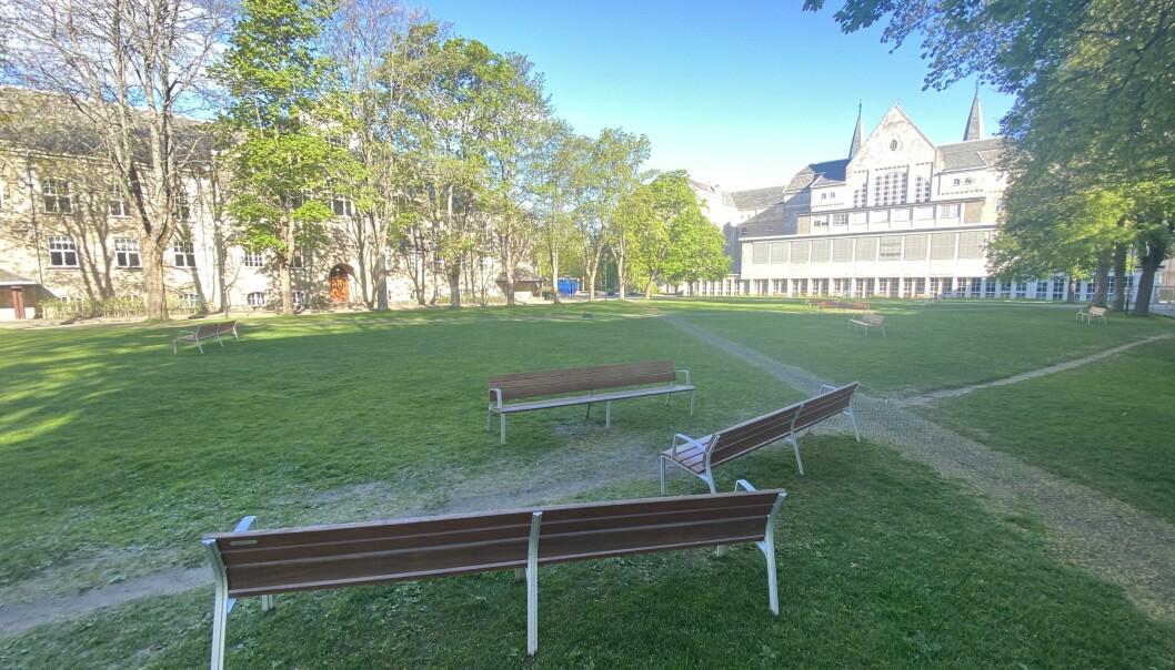 Fredag morgen er parkområdet tomt. Torsdag kveld var 150-200 studenter samlet til fest, i følge politiet for å feire masteroppgavene sine.