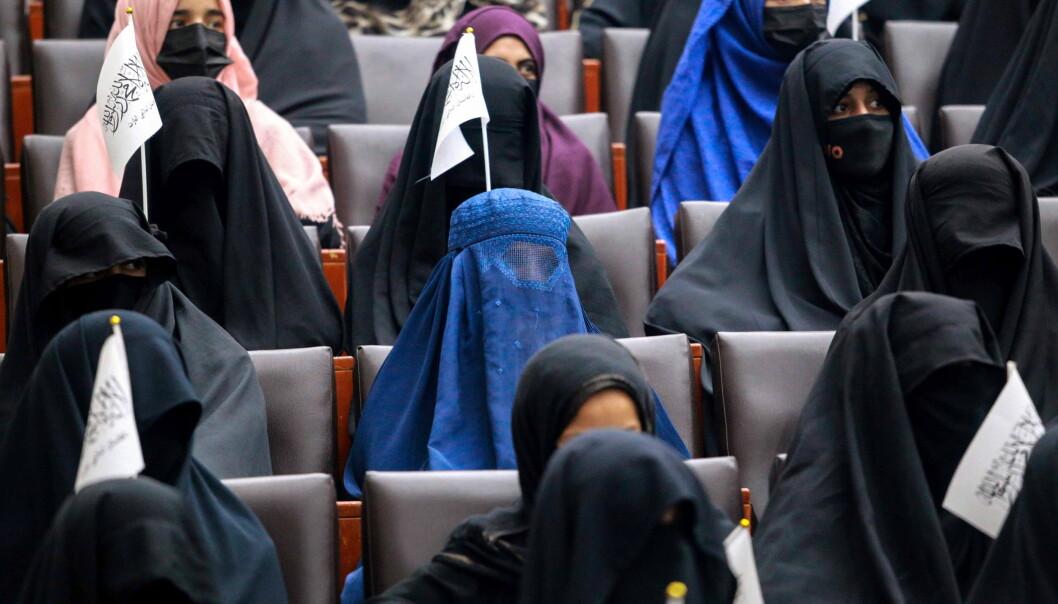 Kvinnelige studenter bak niqab - eller mannlige forelesere bak forheng? Nye regler for studenter og forelesere ved universitetet i Kabul.